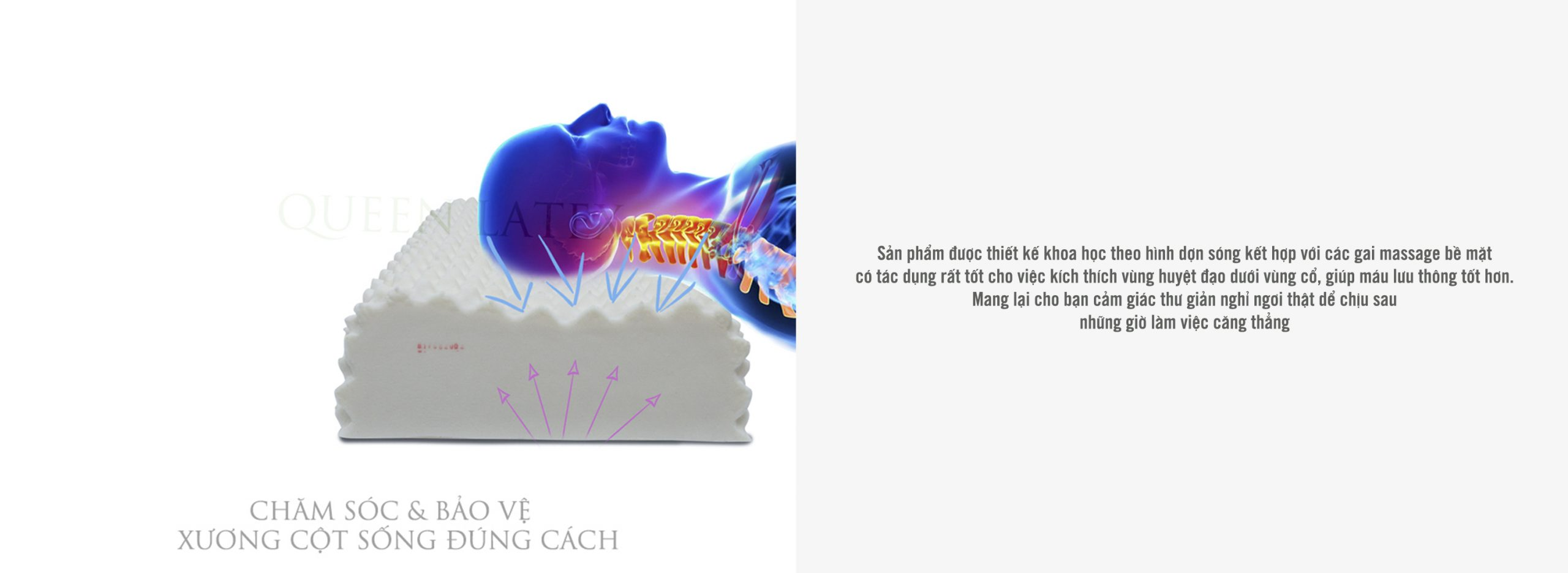Gối cao su massage G/G2 - Vạn Thành goi cao su thien nhien 12 scaled